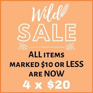 4 x $20 - ALL ITEMS PRICED $10 OR LESS ARE 4 X $20